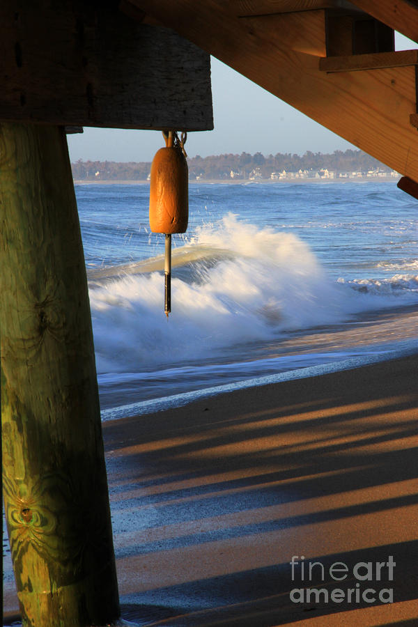 Maine Photograph - Buoy 2 by Michael Mooney