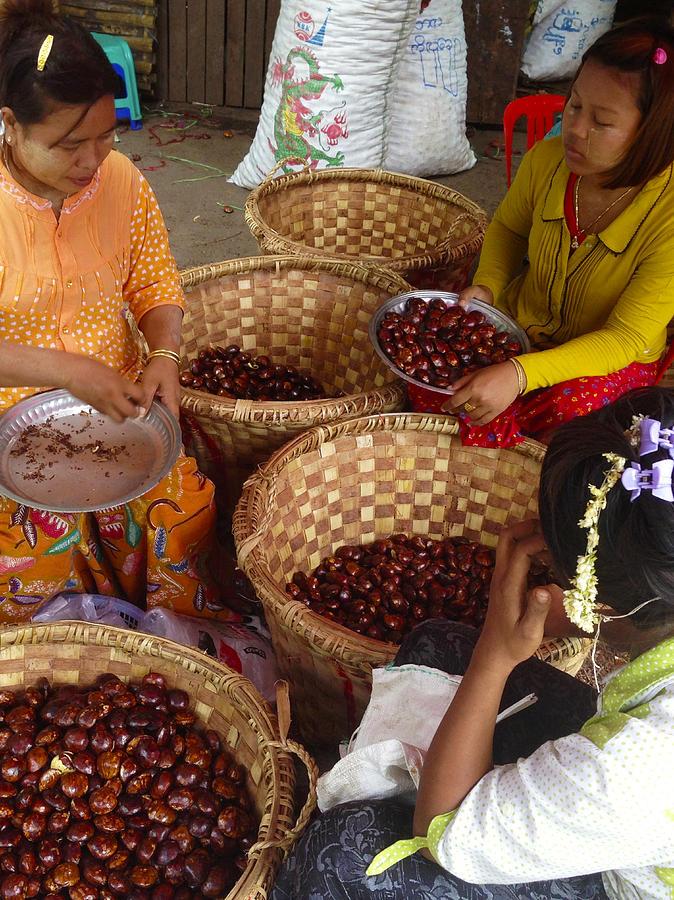 Burmese Ladies Sorting Water Chestnuts Zay Cho Street Market 29th Street Mandalay Burma by PIXELS  XPOSED Ralph A Ledergerber Photography