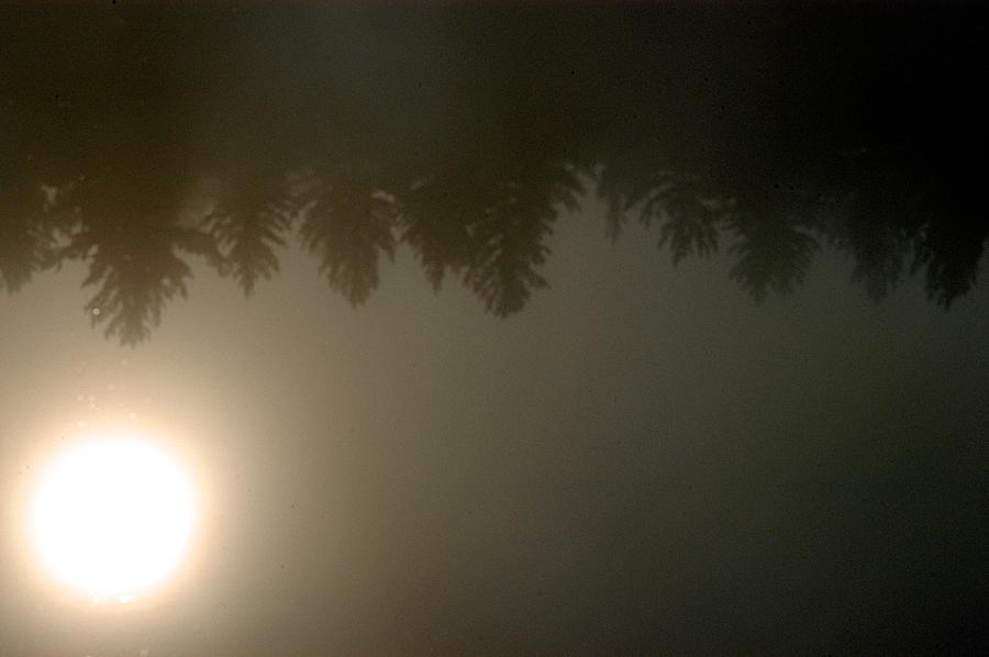 Fog Photograph - Burn Off by Joseph Yarbrough