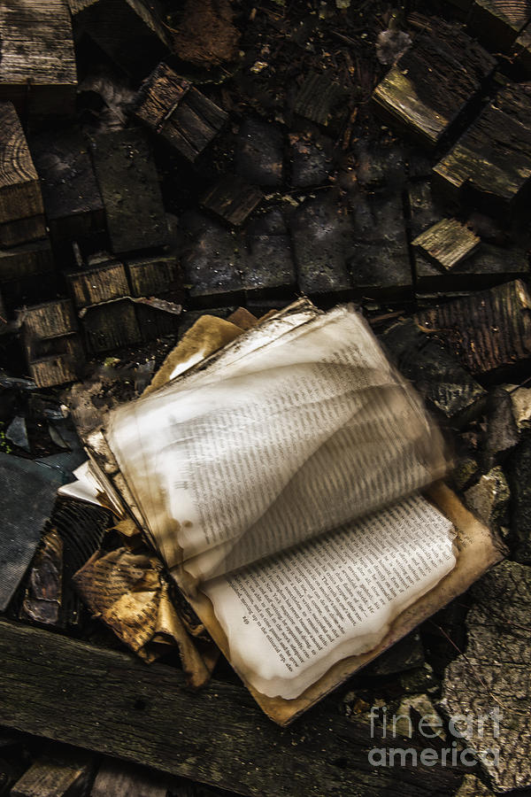 Book Photograph - Burning Books by Margie Hurwich