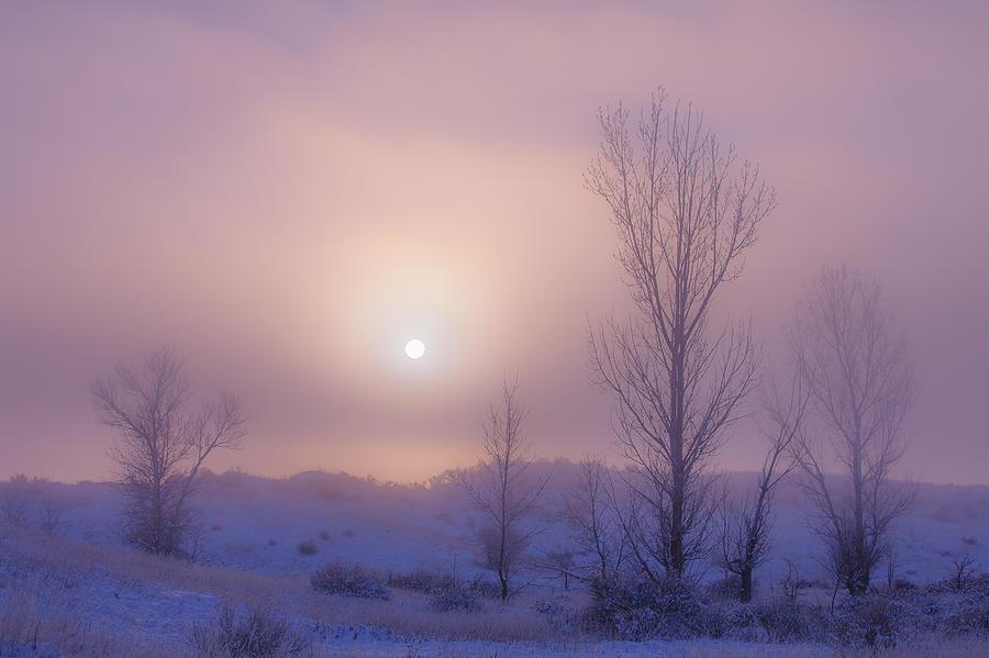Fog Photograph - Burning Through by Darren  White