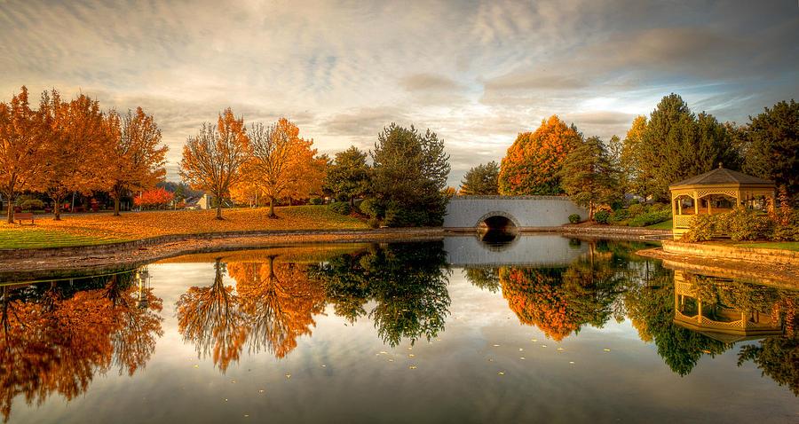 Autumn Photograph - Burning Trees by Anthony J Wright