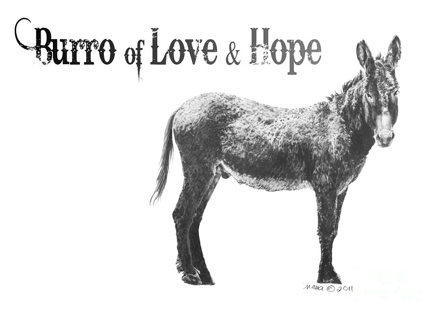 Graphite Drawing - Burro Of Love And Hope by Marianne NANA Betts