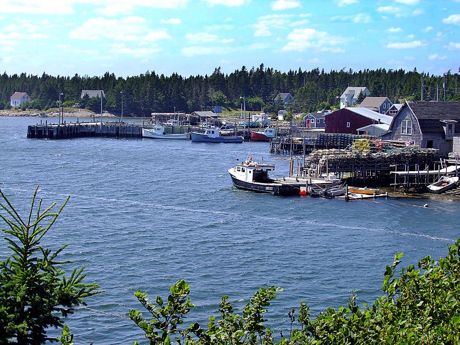George Photograph - Bush Island Nova Scotia by George Cousins