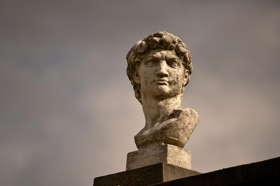 Bust Photograph - Bust Of Apollo by Nadalyn Larsen
