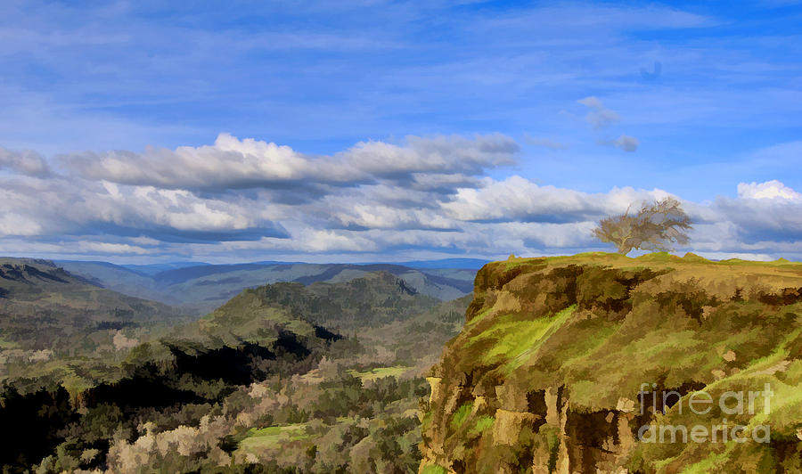 Paradise Photograph - Butte Creek Canyon Overlook by Kathleen Gauthier