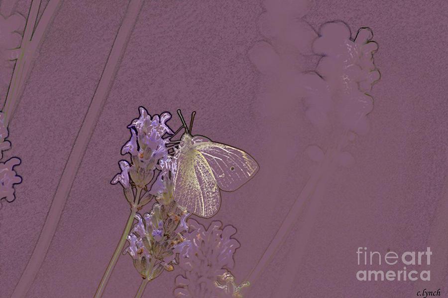 Butterfly Digital Art - Butterfly 1 by Carol Lynch