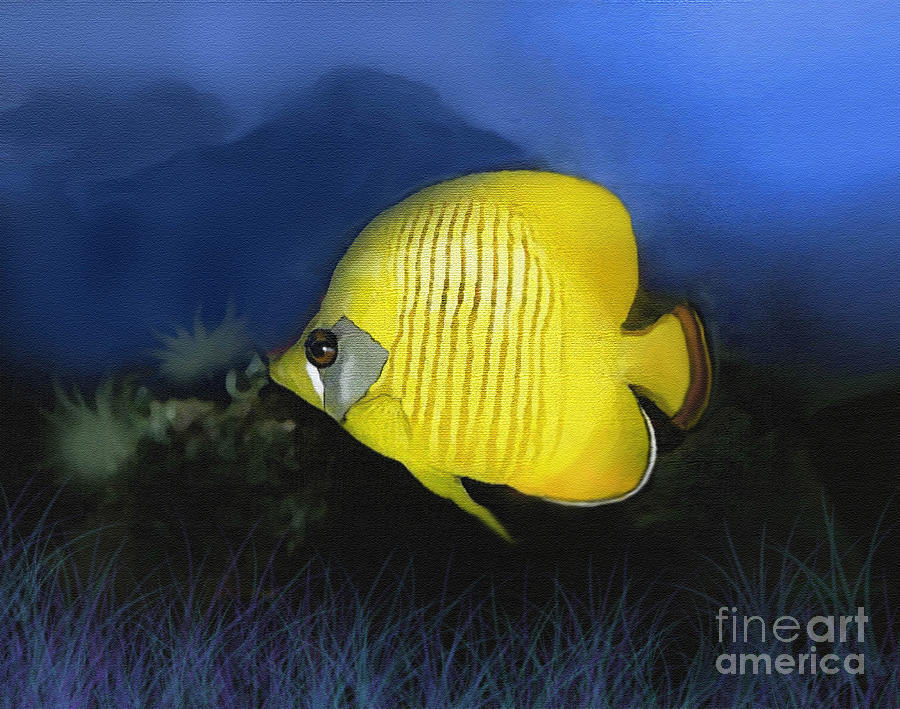 Butterfly Fish Painting - Butterfly 2 by Robert Foster