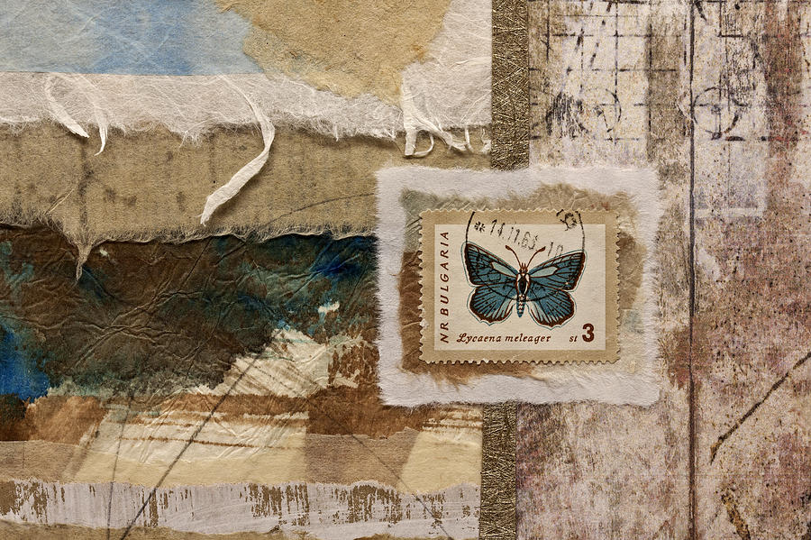 Collage Photograph - Butterfly And Blue Collage by Carol Leigh