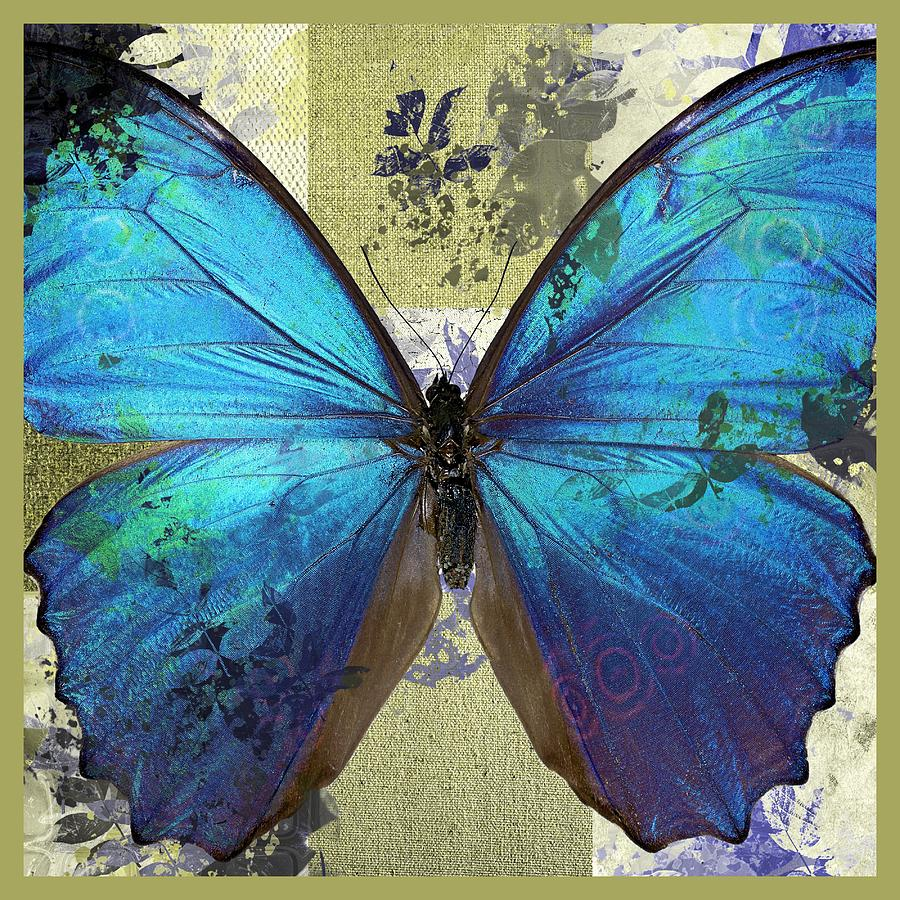 Butterfly Digital Art - Butterfly Art - S01bfr02 by Variance Collections