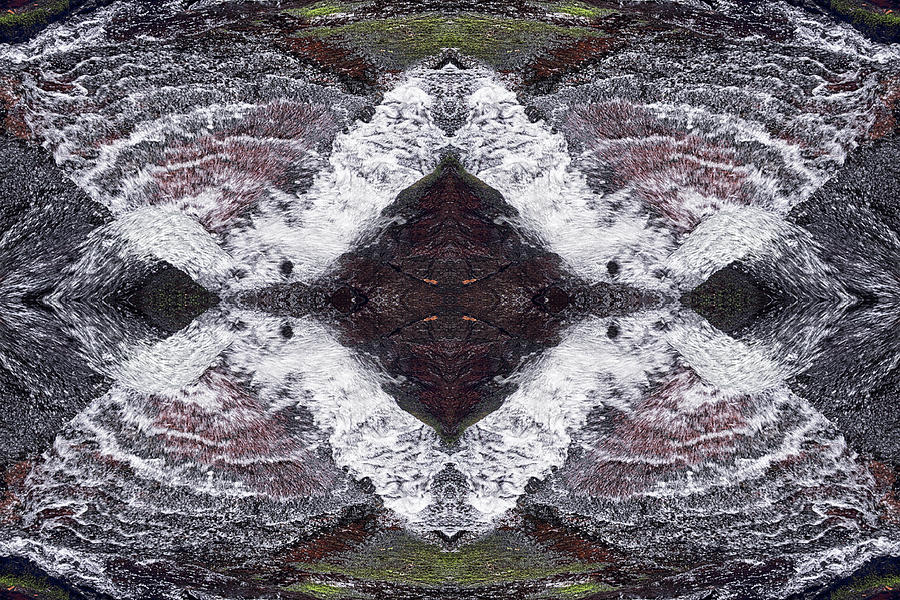 Contemporary Photograph - Butterfly Effect by Dawn J Benko