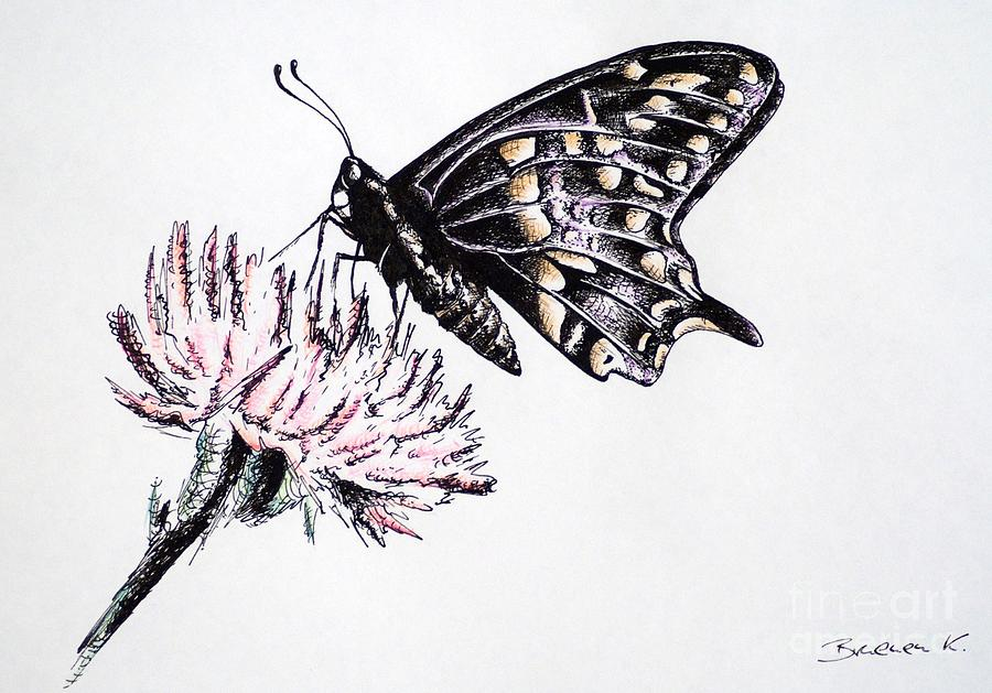 Butterfly Drawing - Butterfly by Katharina Filus