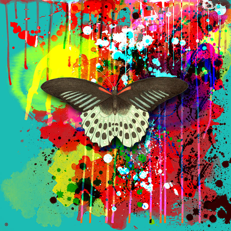 Butterfly Montage Painting by Gary Grayson