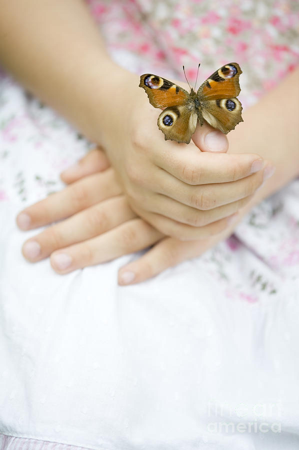 Butterfly Resting On A Girls Hand Photograph by Lee Avison