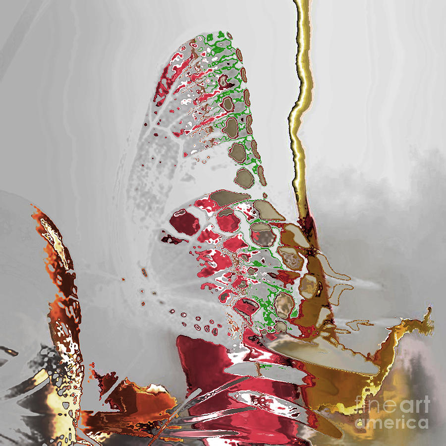Butterfly Digital Art - Butterfly by Soumya Bouchachi