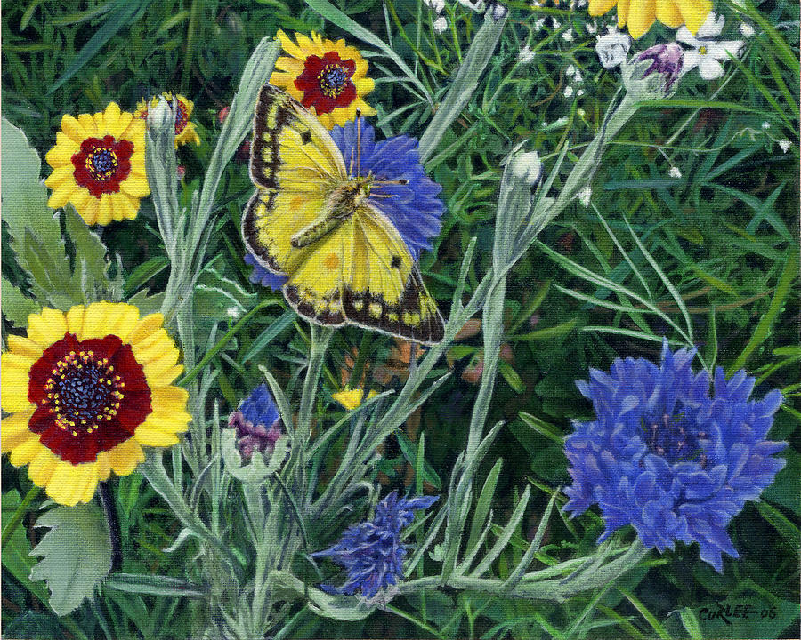 Garden Painting - Butterfly Wildflowers Spring Time Garden Floral Oil Painting Green Yellow by Walt Curlee
