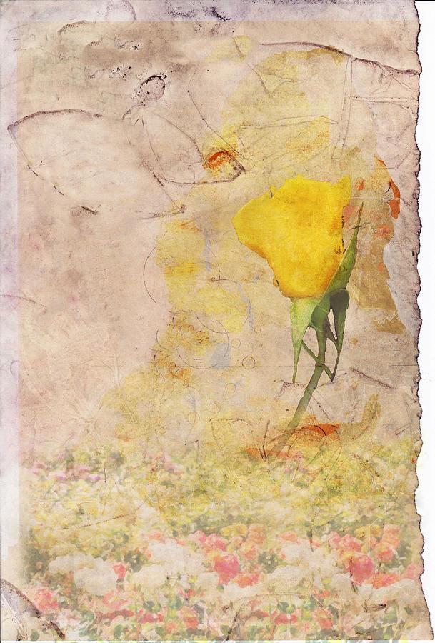 Yellow Digital Art - Butterfly Woman by Juli Cromer