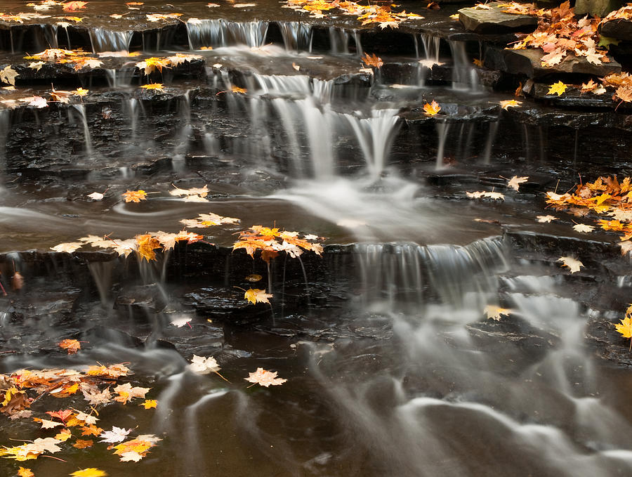 Cleveland Metroparks Photograph - Buttermilk Falls by Shannon Workman