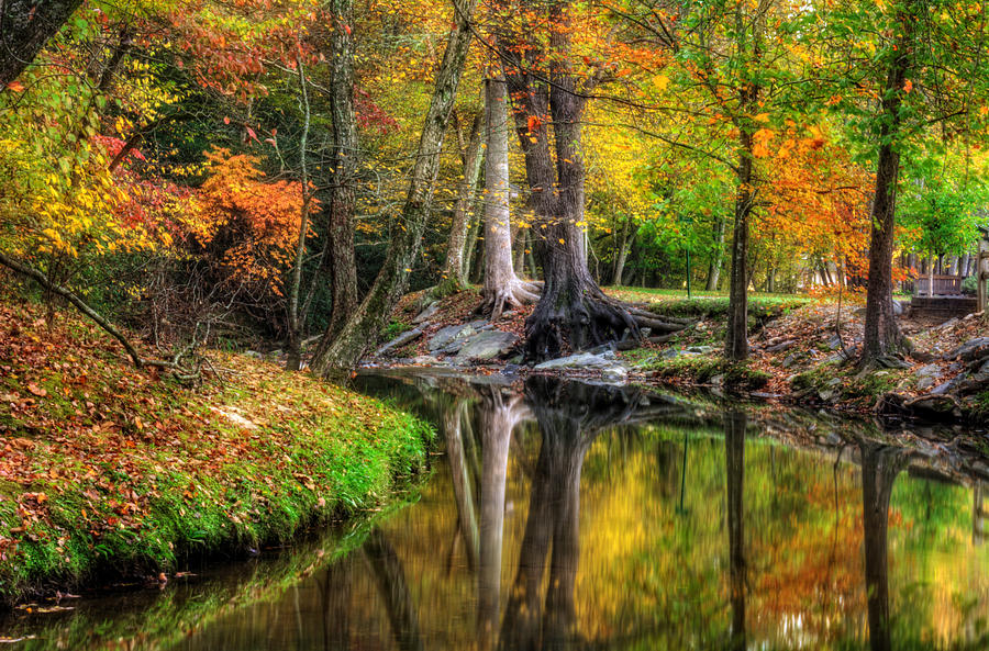 Butternut Creek in Fall by Greg Mimbs