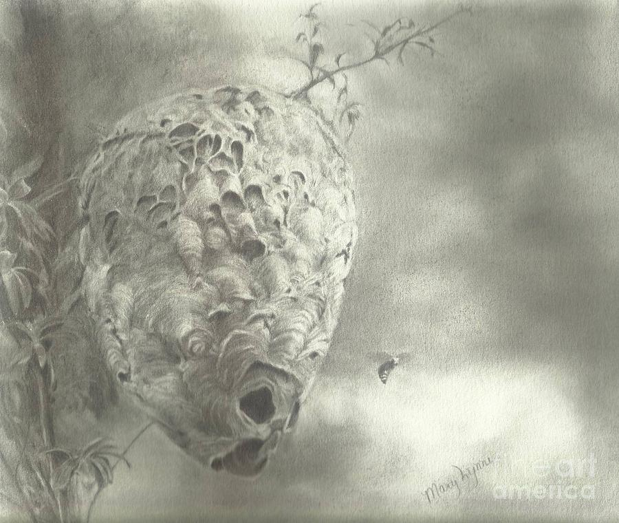 Buzz Off Drawing by Mary Lynne Powers
