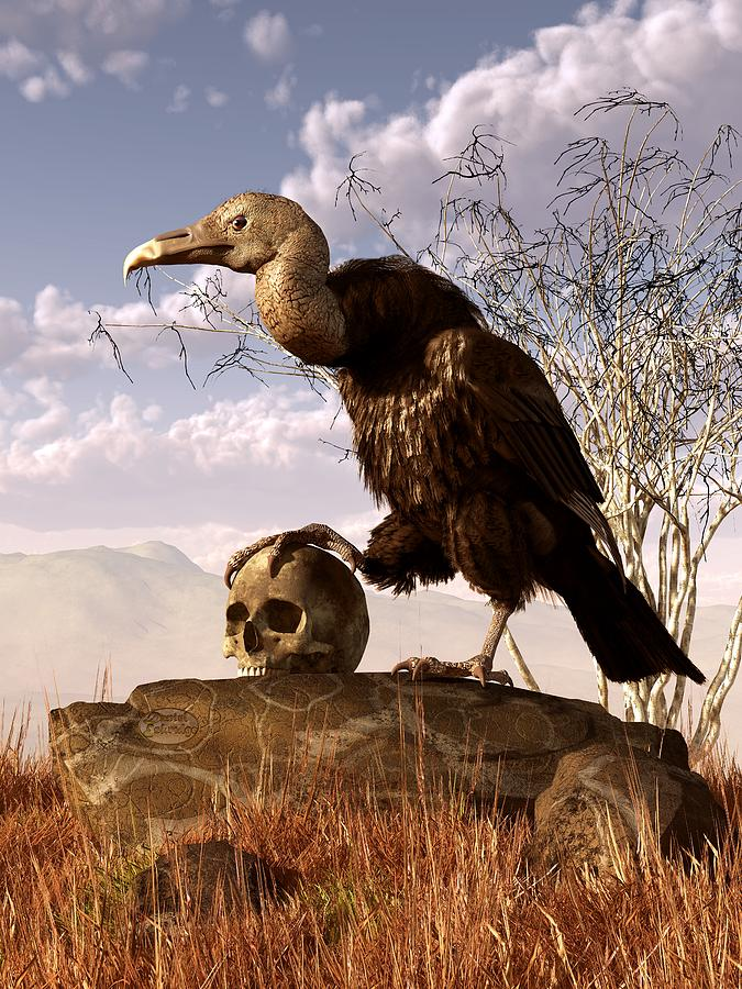 Vulture Digital Art - Buzzard With A Skull by Daniel Eskridge