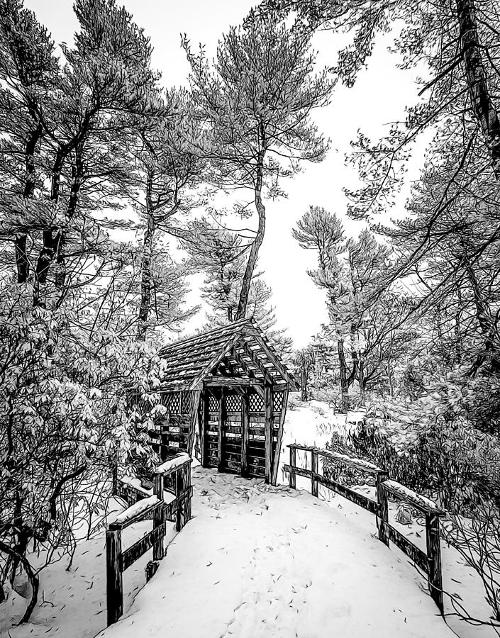 BW Covered Bridge in the Snow by Steve Zimic