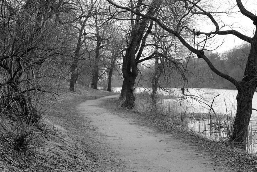 High Park Photograph - By Grenadier Pond I by Nicky Jameson