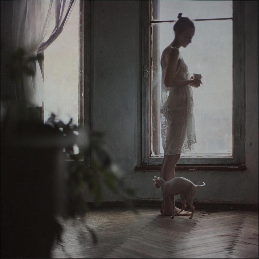 Girl Photograph - By the window by Anka Zhuravleva