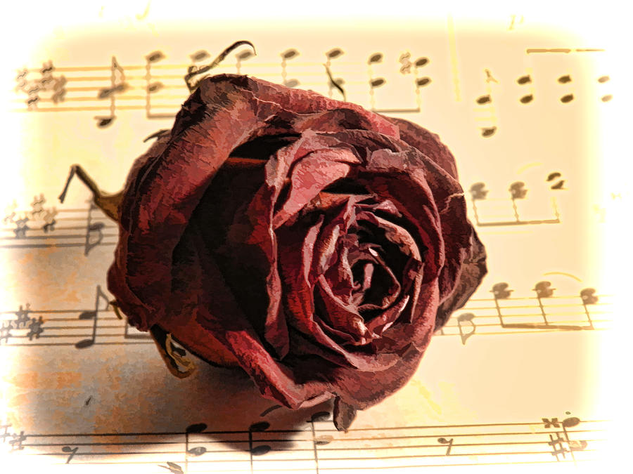 Music Photograph - Bygone by Grace Dillon