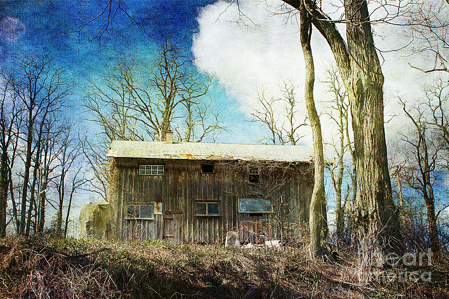 Cabin Photograph - Cabin Fever by A New Focus Photography