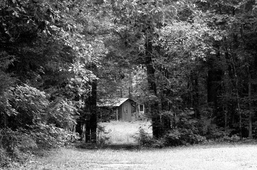 Scenic Photograph - Cabin In The Woods  by Kim Galluzzo Wozniak