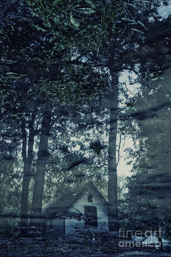 House Photograph - Cabin In The Woods by Margie Hurwich