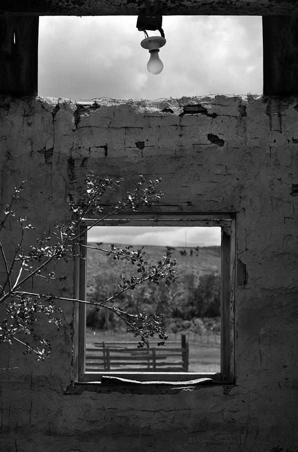 Unique Photograph - Cabin Window 2 Bw by Roger Snyder