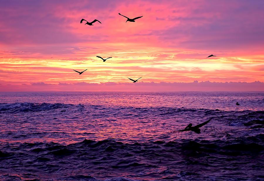 Sand Photograph - Cabo San Lucas Sunrise by Marcia Colelli