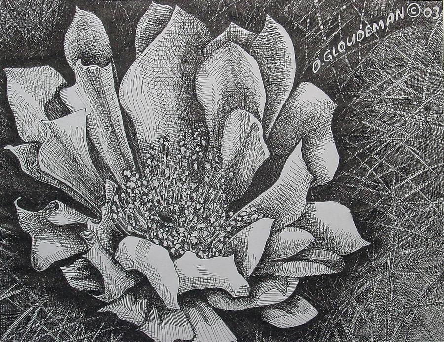 Flowers Drawing - Cactus Flower by Denis Gloudeman