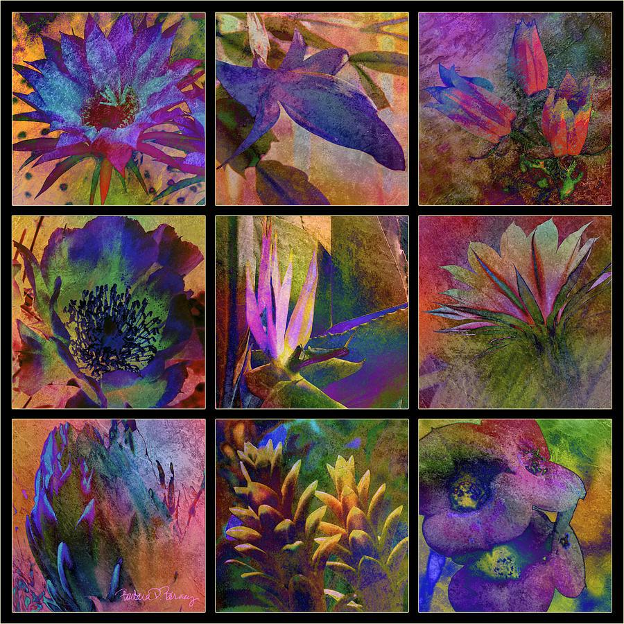 Cactus Digital Art - Cactus Flowers by Barbara Berney