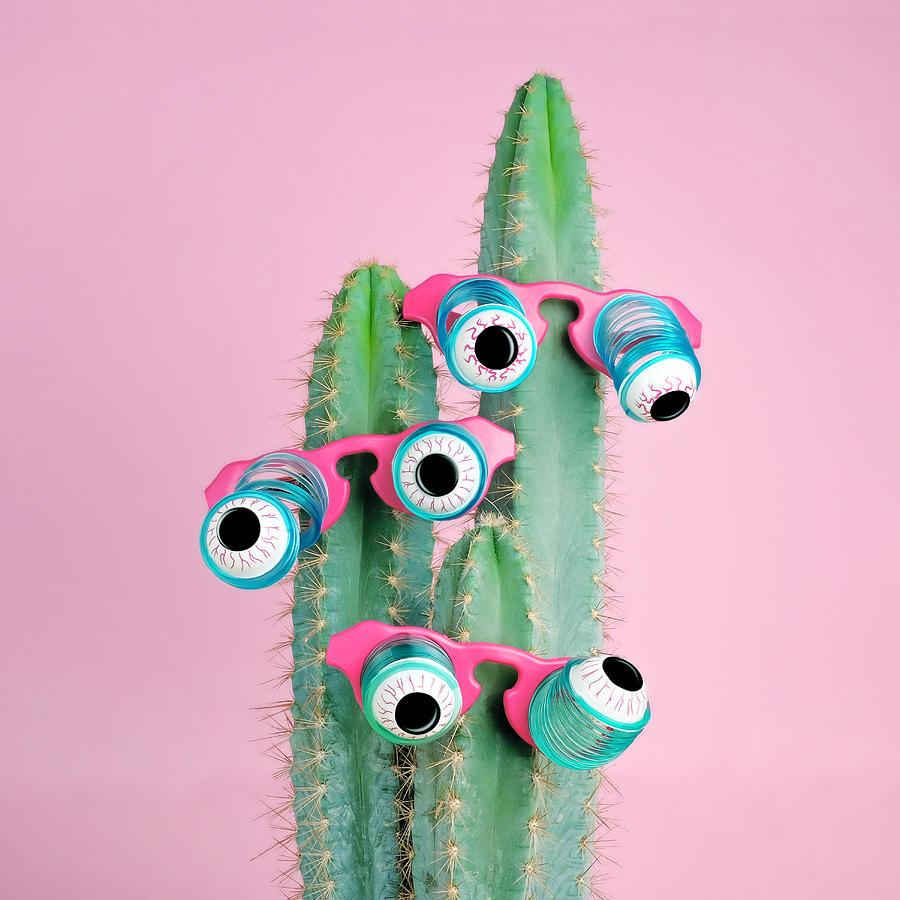 Googly Eyes Photograph - Cactus Wearing Eyeball Glasses by Juj Winn