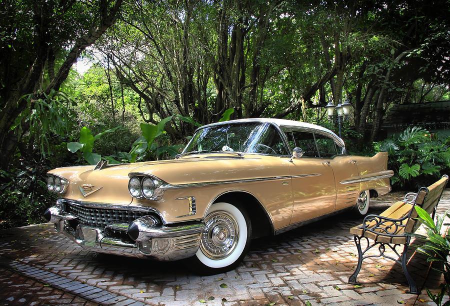 Cadillac Photograph - Cadillac  by Rudy Umans