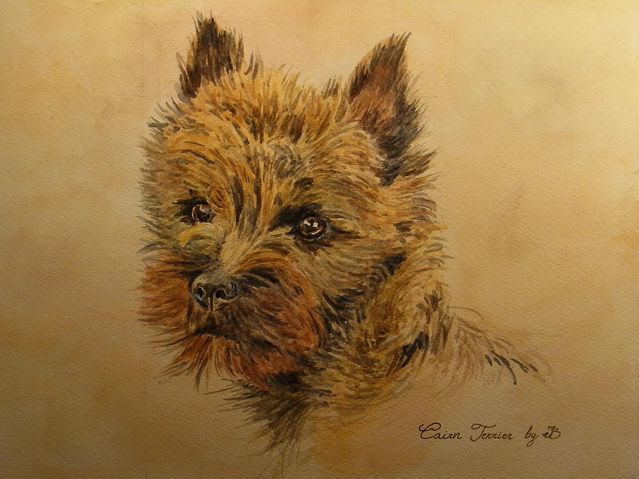 Portrait Painting - Cairn Terrier Dog by Juan  Bosco