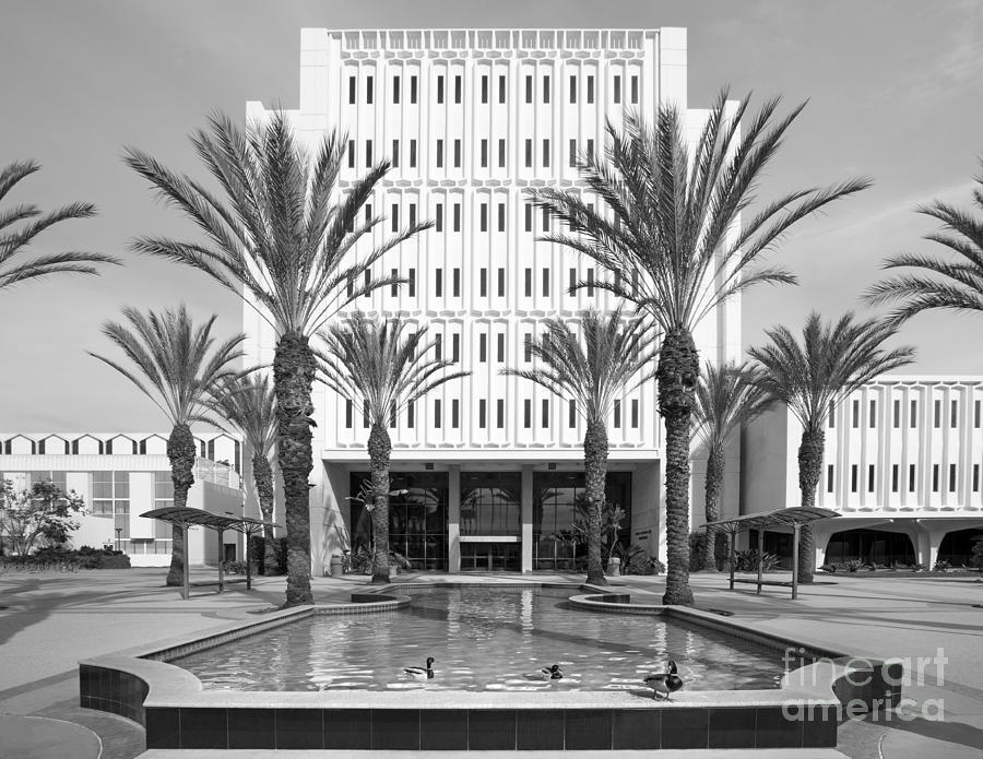 American Photograph - Cal State University Fullerton Langsdorf Hall by University Icons