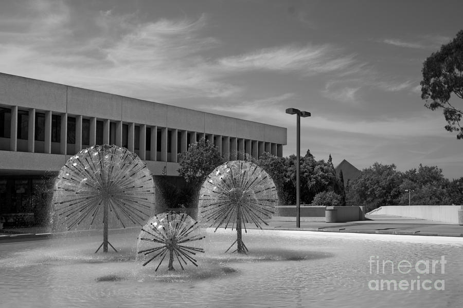49ers Photograph - Cal State University Long Beach Student Union by University Icons