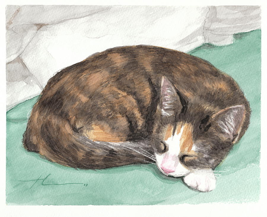 Calico Cat Sleeping Watercolor Portrait Drawing by Mike Theuer