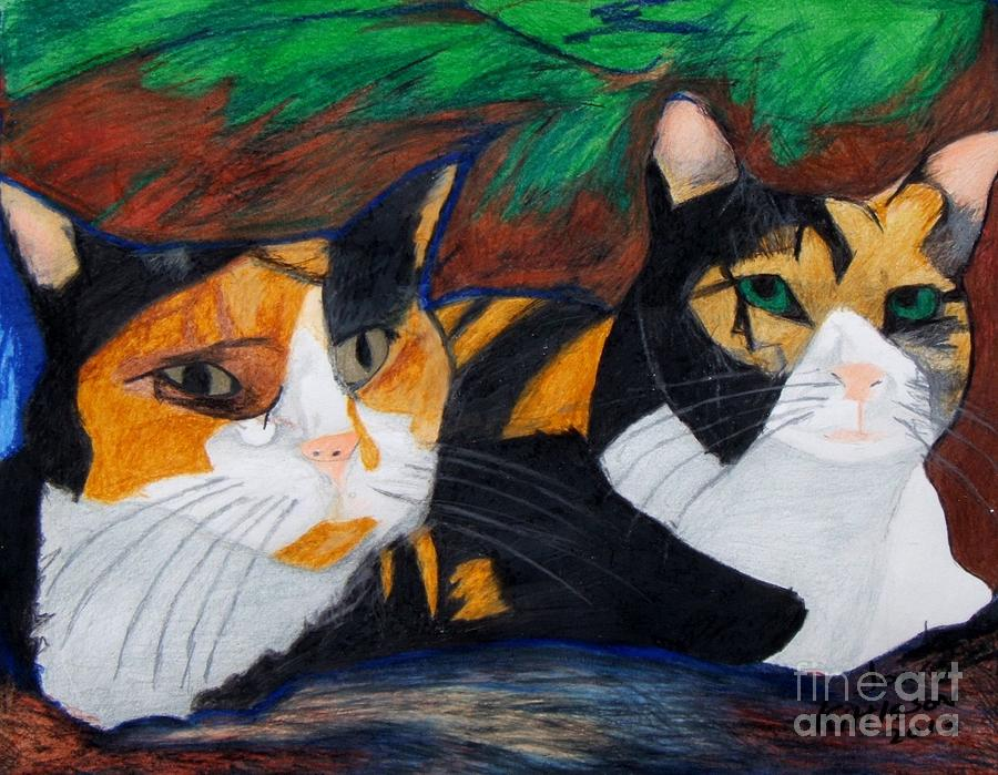 Calico Cats Drawing by Jon Kittleson