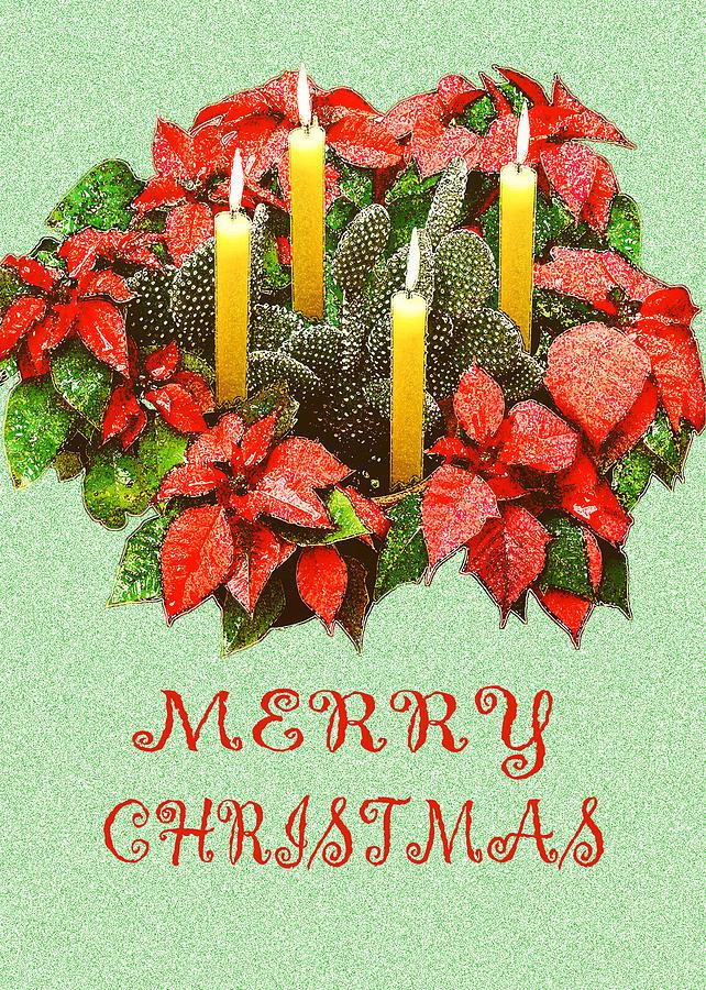 Christmas Photograph - California Cactus Christmas by Mary Helmreich