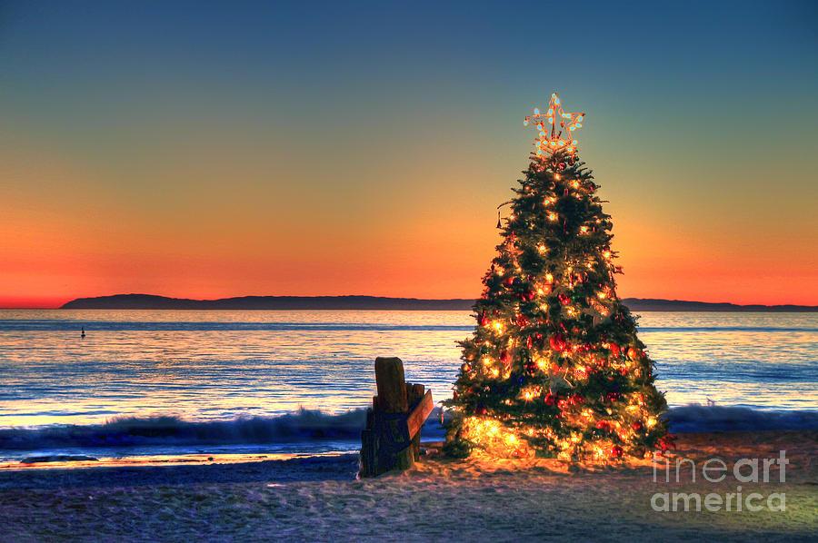 California Christmas Sunset Photograph By Elena Northroup