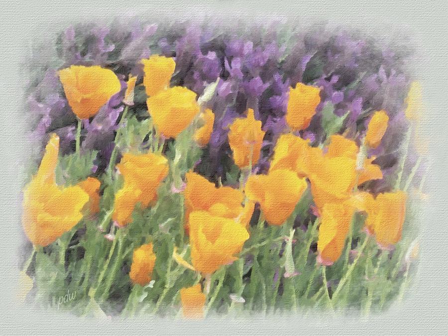 Scenic Painting - California Poppies by Philip White
