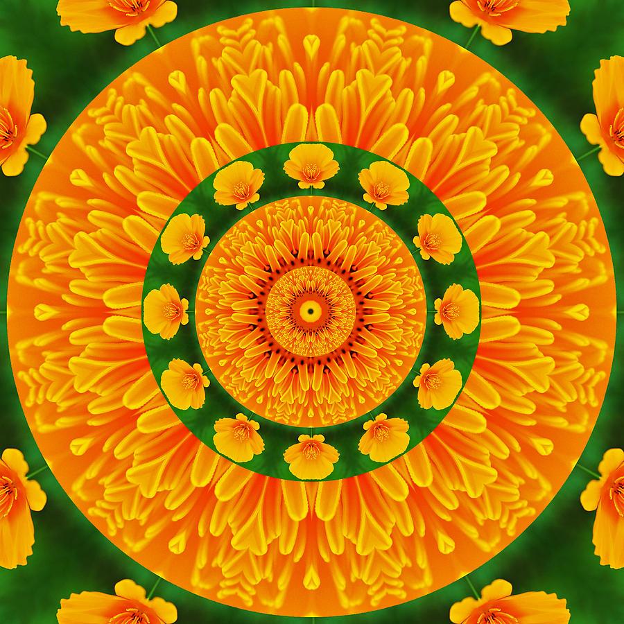 Kaleidoscope Photograph - California Poppy Pizzazz by Liz Mackney