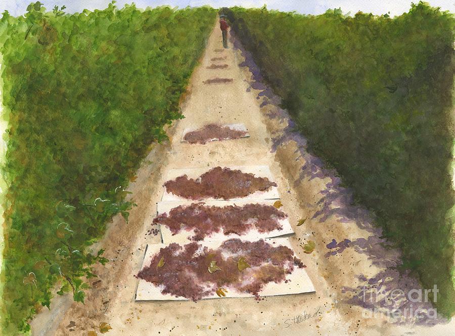 Vineyard Painting - California Raisin Harvest by Sheryl Heatherly Hawkins
