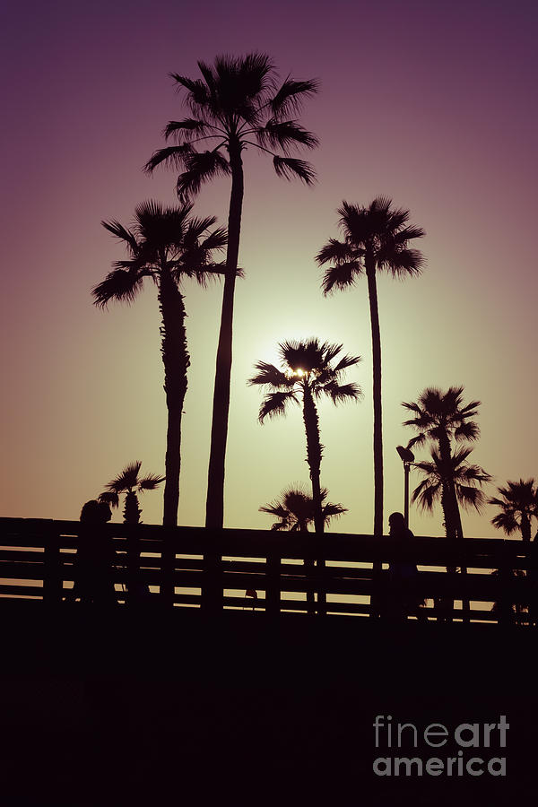 America Photograph - California Sunset Picture With Palm Trees by Paul Velgos