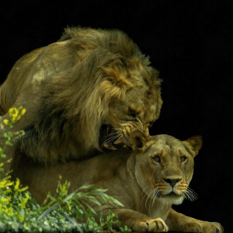 Africa Digital Art - Call Of The Wild 2 by Ernie Echols